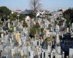 世田谷墓地
