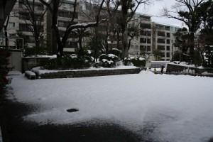 雪かきのご信者