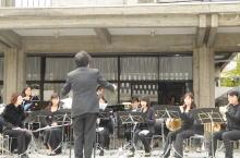 吹奏楽団演奏風景